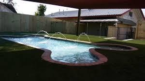 Swimming Pool dogs
